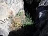 pinnacles-009_1280x853
